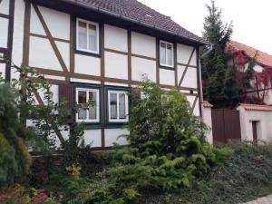 Gasthaus 客棧 - Dingelstedt