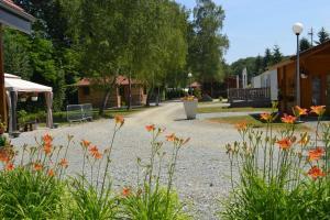 Location gîte, chambres d'hotes Camping du Lac de la Seigneurie dans le département Territoire de Belfort 90