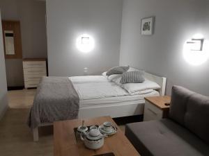 Apartamenty Białe Studia Gliwice otwarte dla osób korzystających z planowanych badań i zabiegów w szpitalach pełna dezynfekcja ozonowanie