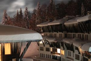 CITY4US Grand Monastery Apart - Apartment - Pamporovo