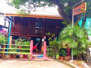 Hostels e Albergues - Hostel Downtown Montezuma