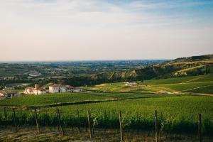 Borgo Condé (1 of 89)