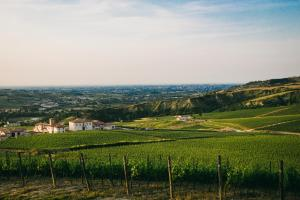 Borgo Condé (8 of 81)