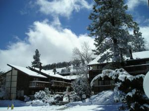 Three-Bedroom Premier Townhouse Unit #17 by Snow Summit Townhouses - Hotel - Big Bear Lake