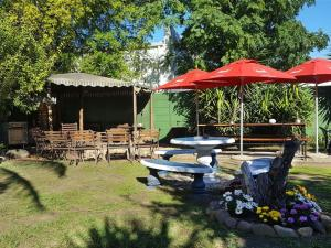 Auberges de jeunesse - Stumble inn Backpackers