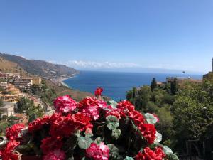 SPLENDID SEA VIEW with terrace e BBQ e Parking - AbcAlberghi.com