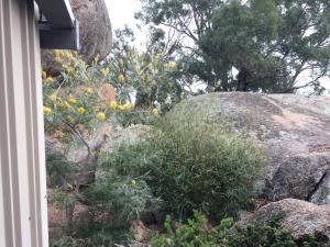 Rocky Ridge Retreat, Bauernhöfe  Mudgee - big - 6