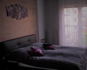 Apartament New York Różana 19