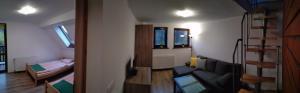 Apartament nr 6
