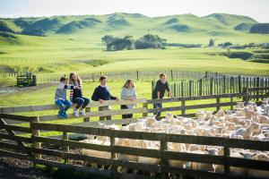 The Farm at Cape Kidnappers (29 of 62)