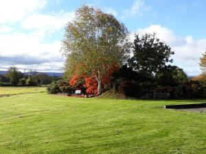 Grove Wellness Centre B&B, Bed and Breakfasts  Shanballymore - big - 47