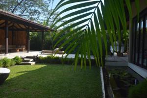 Casas de Agua, Apartmánové hotely  Pláž Santa Teresa - big - 3
