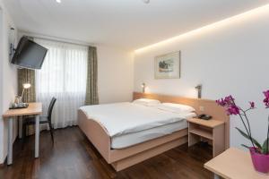 Hotel Vorab, Hotely  Flims - big - 15