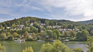 Hotel Neckarlux - Heidelberg