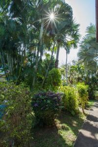 Ya Nui Resort, Resorts  Strand Rawai - big - 90