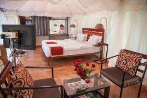 Auberges de jeunesse - Magenta Resort