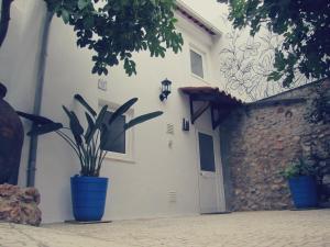 Casa dos Sentidos - Setúbal, Setúbal