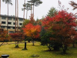 Evergreen Fuji, Hotely  Fujiyoshida - big - 63