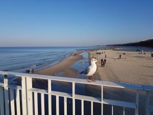 Blizej Morza Kolobrzeg