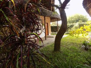 Echo Villas Watamu, Chaty v prírode  Watamu - big - 31