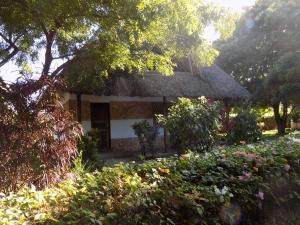 Echo Villas Watamu, Chaty v prírode  Watamu - big - 21