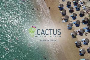 Hostels e Albergues - cactus beach paros