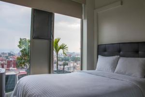 Puerta Alameda Suites, Appartamenti  Città del Messico - big - 136