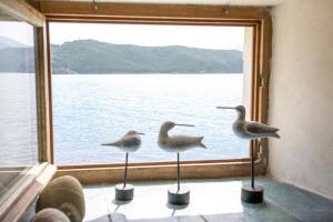 Appartamento il Sottomarino, Apartmanok  Portoferraio - big - 36