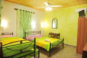 Villa Dimitris Apartments & Bungalows, Apartmány  Lefkada - big - 20