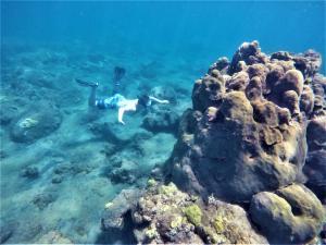 Wanderlust Caribbean (18 of 41)