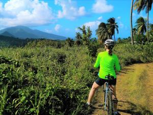 Wanderlust Caribbean (39 of 41)