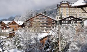 Hotel Maya Caprice - Wengen