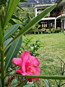 Hostal Restaurant Gocta, Hostelek  Cocachimba - big - 46