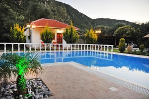 Villa Dimitris Apartments & Bungalows, Apartmány  Lefkada - big - 19