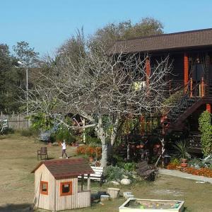 BLACK-HOUSE, Penzióny  Picunda - big - 35