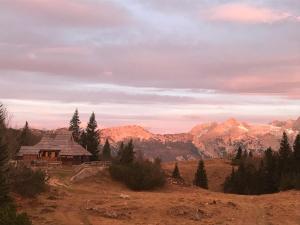 Chalet Tisa Velika Planina