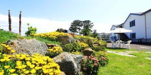 White dream Pension, Dovolenkové domy  Jeju - big - 41
