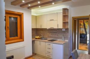 Apartments Josipovic, Appartamenti  Zlatibor - big - 79