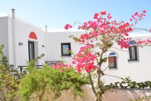 Paradisia Villas, Residence  Naxos Chora - big - 55