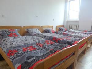 Best Location Hostel Lublin