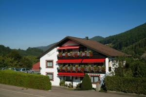 Haus Bergwiese - Harlisberg