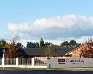 BK's Chardonnay Motor Lodge - Accommodation - Masterton