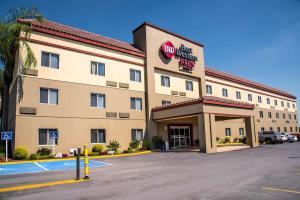 Best Western PLUS Monterrey Airport, Hotels  Monterrey - big - 94