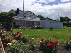 Haus-Nordseesand - Barsfleth