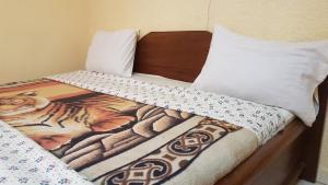 Chinchilla Hotel