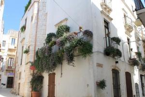 Auberges de jeunesse - Casa Riccardi