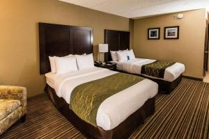 Comfort Inn Lehigh Valley West, Hotels  Fogelsville - big - 18