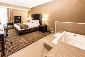 Comfort Inn Lehigh Valley West, Hotels  Fogelsville - big - 27