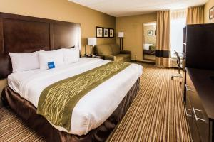 Comfort Inn Lehigh Valley West, Hotels  Fogelsville - big - 31