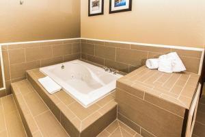 Comfort Inn Lehigh Valley West, Hotels  Fogelsville - big - 35